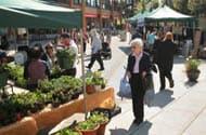 Farmers Market, Lynn Valley